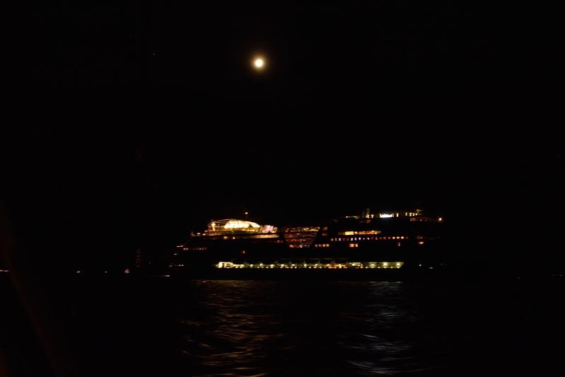 Cruiseschip op de Elbe