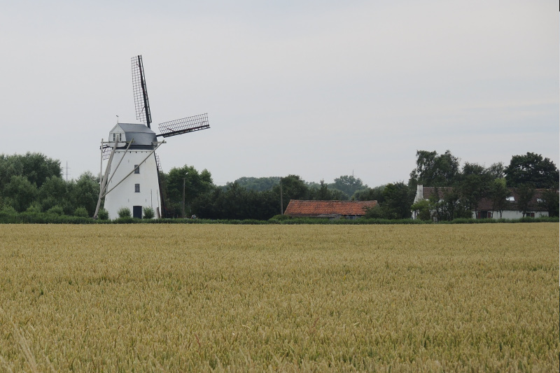 Molen Meetkerke