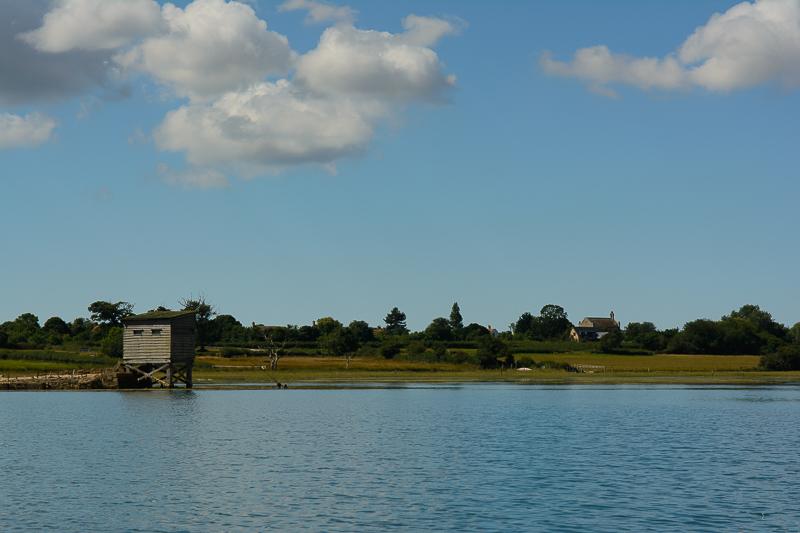 Newtown Estuary